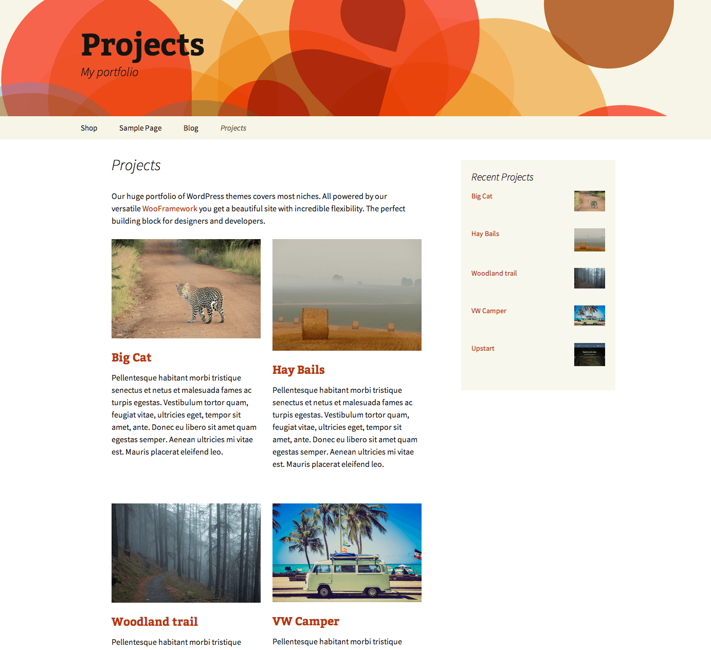 image of Wootheme portfolio plugin