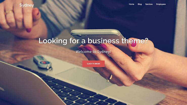 Image of a website based on a Sydney theme