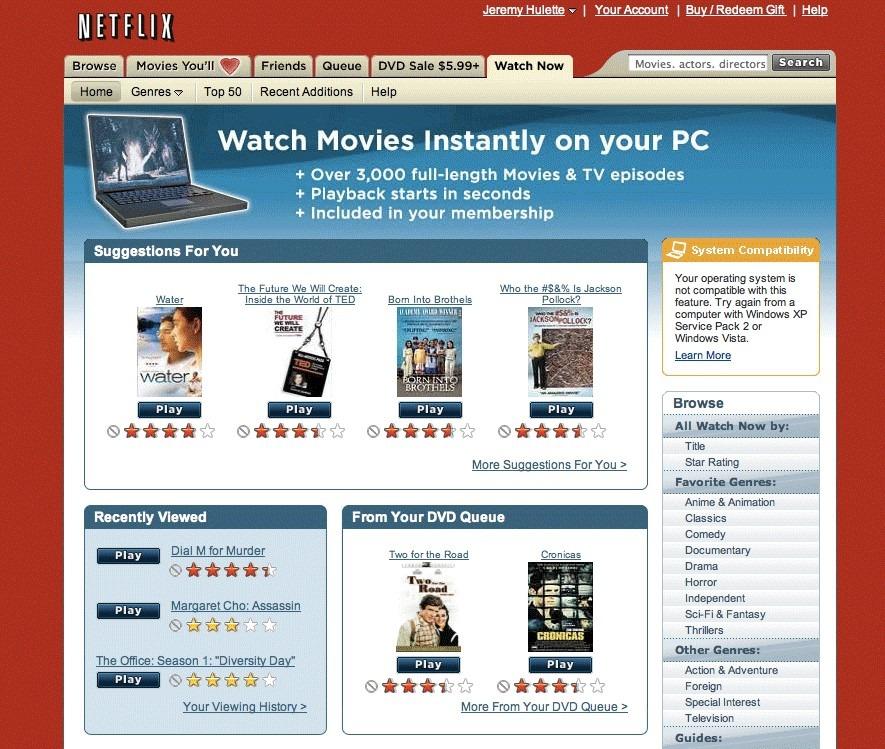 How was Netflix developed?