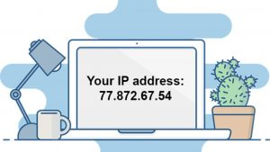 Server IP address displayed on the screen