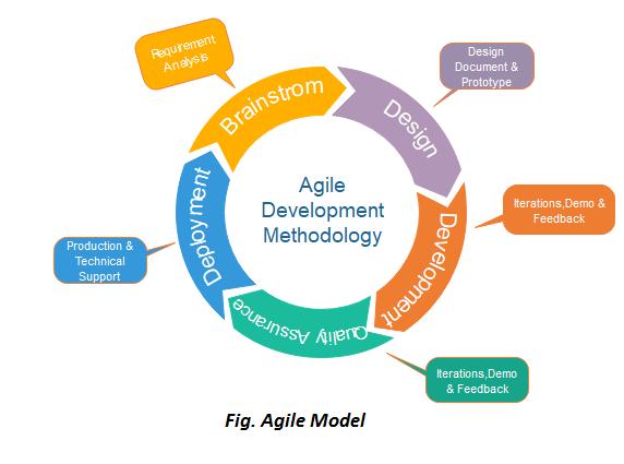 Agile project management model